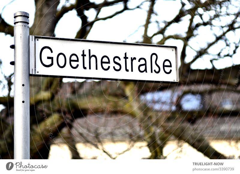 Modernes, weisses Straßenschild Goethestraße, freistehend an Aluminiumstange vor unscharfem Hintergrund (alter Baum, Häuserzeile, Himmel). Außenaufnahme