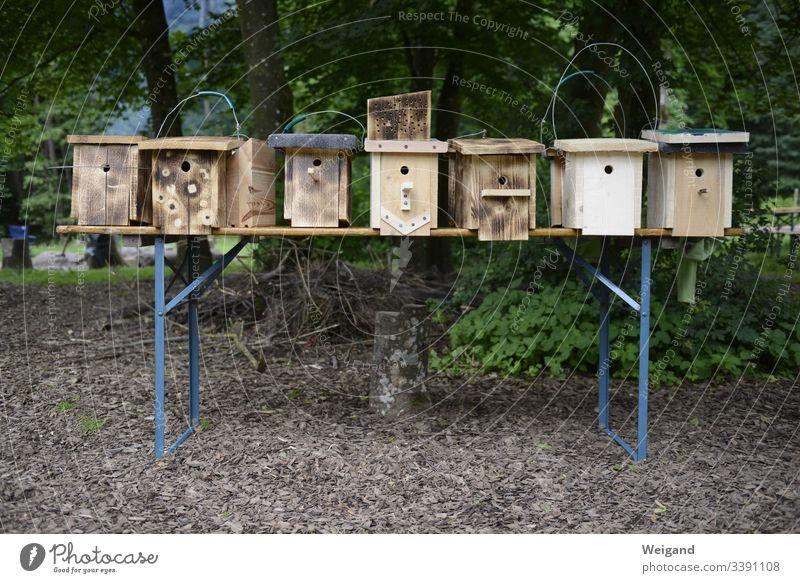 Nistkasten vogelschutz Naturschutz bauen Holz schreinern