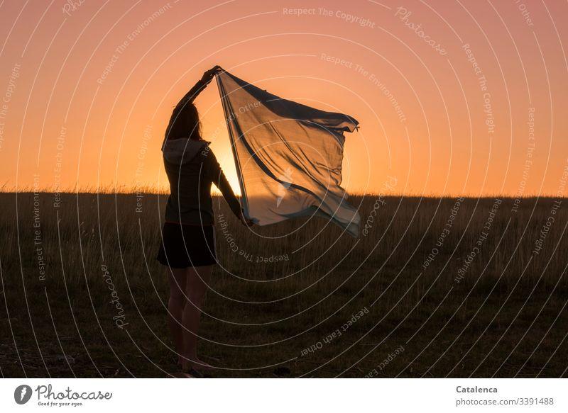 Am Horizont der Prärie geht die Sonne unter, die junge Frau hält ein Tuch hoch Junge Frau feminin 1 Mensch Abenddämmerung Sonnenuntergang Pflanze Gras Wiese