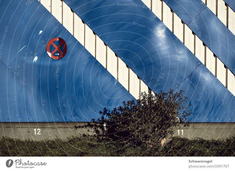 Spuren einstiger Größe / ein Strauch im Halteverbot Fassade gestutzt verkleinert schleifspuren Verkehrszeichen Schilder & Markierungen Wand Veränderung