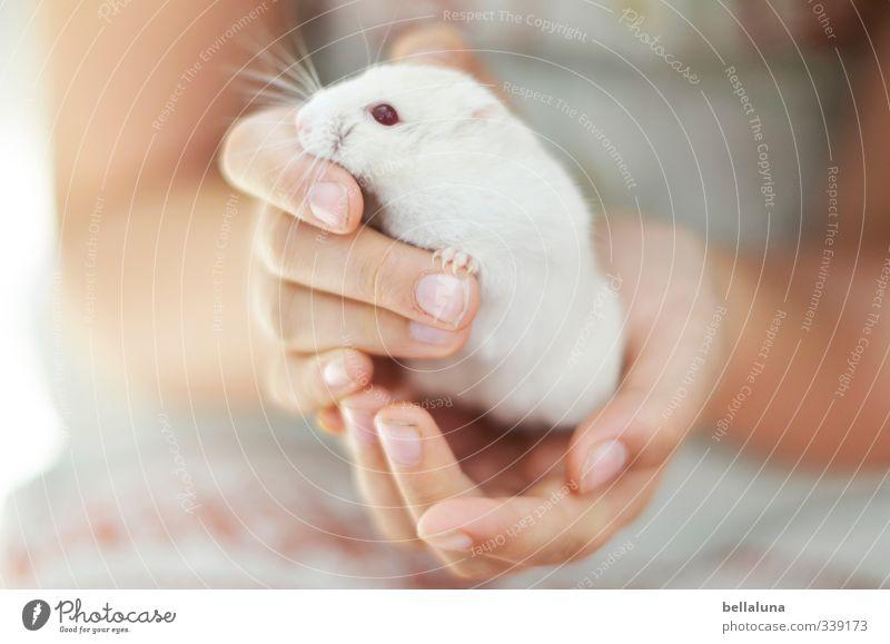 Luna | Ich und du. Mensch Kind weiß Hand rot Mädchen Tier Leben feminin Freundschaft Körper Haut Kindheit Arme Finger festhalten
