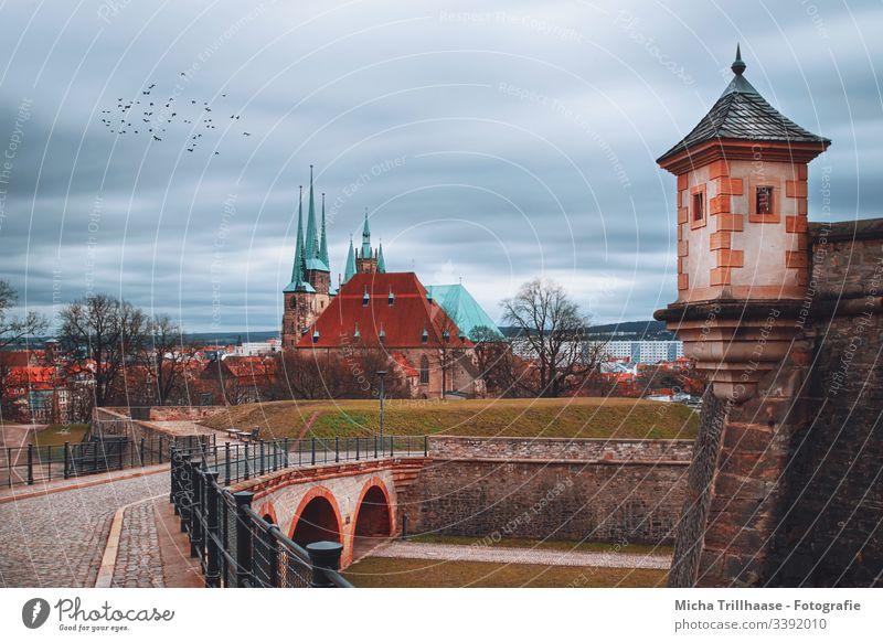 Blick von der Zitadelle Petersberg zum Erfurter Dom Thüringen Bauwerk Architektur Sehenswürdigkeit Kirche Stadt Europa Turm Ferien & Urlaub & Reisen Tourismus