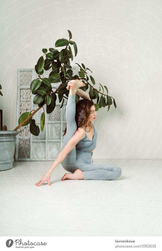 Junge Yogini übt Yoga und macht Krounchasana-Pose in einem Raum mit einem Baum und weißen Wänden aktiv Asana Athlet sportlich attraktiv Körper brünett