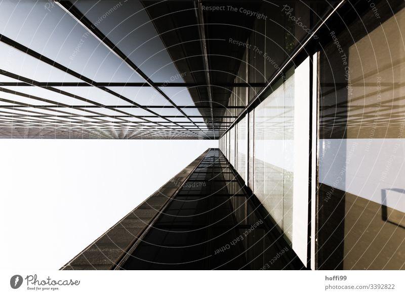 abstrakte Fassade Hochhaus Bankgebäude Fenster Gebäude ästhetisch Symmetrie Surrealismus Licht stagnierend rein Kapitalwirtschaft Ordnung hoch modern