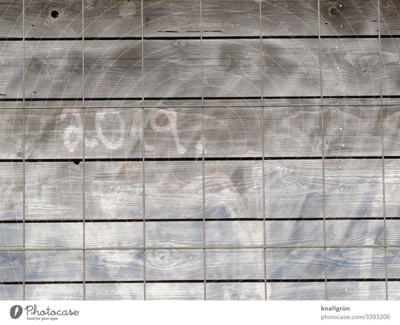 """Graffiti """"2019"""" auf einer Bretterwand, davor ein Bauzaun aus Metall Wand Kommunizieren Holz Bretterzaun Metallzaun Muster Strukturen & Formen Zaun Außenaufnahme"""