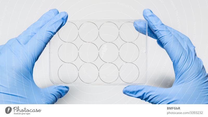 Hände in Handschuhen, die Plastikprobenbehälter halten Labor einstudieren Kunststoff Behälter stoppen Prüfung Behälter u. Gefäße Virus Gefahr gefährlich