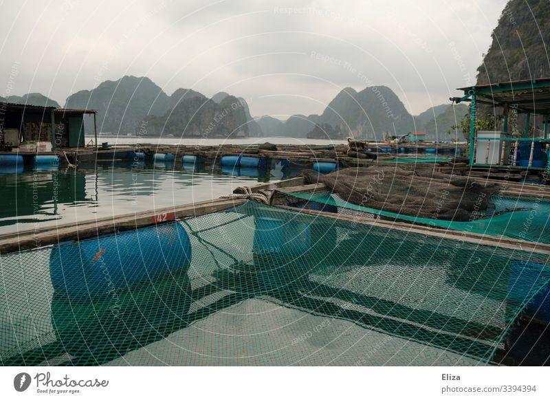 Schwimmendes Fischerdorf auf dem Wasser mit Fischfarm und Netzen in der Halong Bucht in Vietnan floating village schwimmendes Dorf Fischernetz Asien
