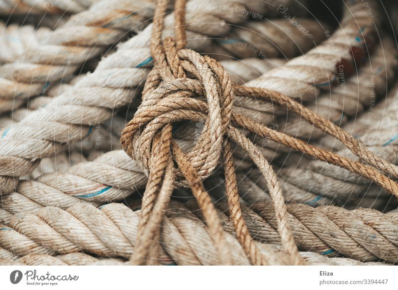 Nahaufnahme dicker, rauer Taue und Seile in beige und einem Knoten Seefahrt alt Detailaufnahme Farbfoto Segeln Schiff verknotet Gedeckte Farben Menschenleer