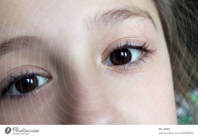 Blick eine Mädchens aus braunen Augen braunes Auge Pupille Wimpern Augenbraue Gesicht Nahaufnahme Kind brünett Mensch Nase Haare & Frisuren Kopf Kommunikation