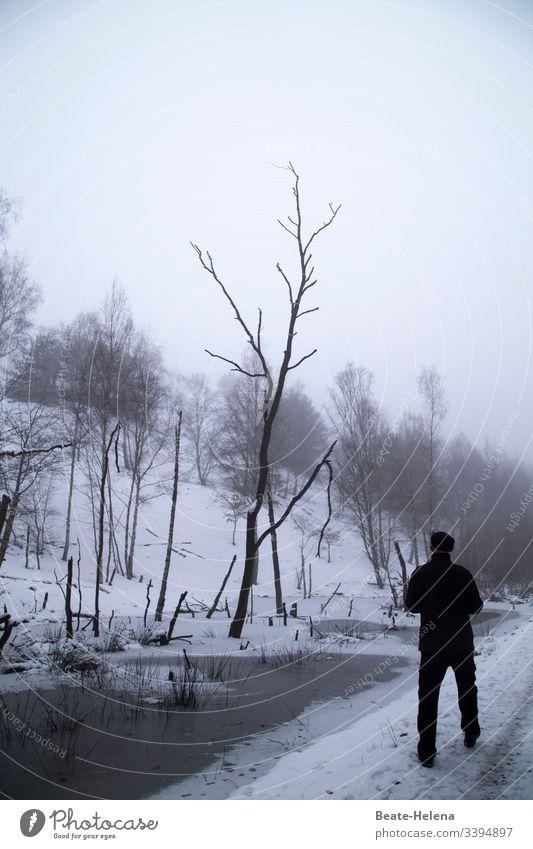 Der Winter ist eingekehrt! schwarz-weiss Kälte Spaziergang Bäime kahl Schnee Wasser Baumsterben kahle Bäume Umwelt