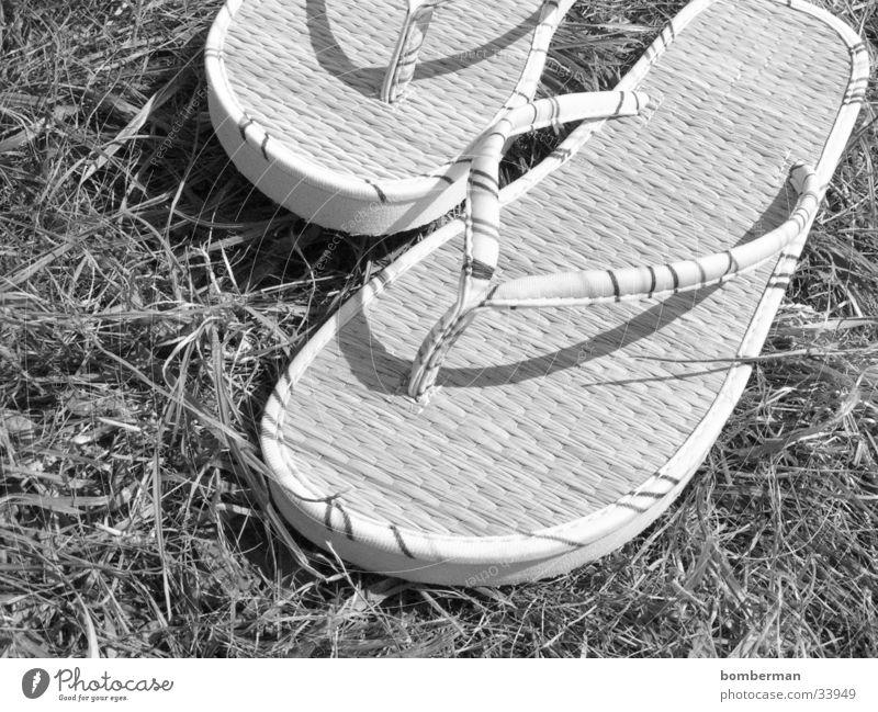 flipflops Flipflops Sandale Schuhe Gras Fototechnik