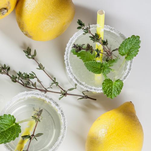 zwei Gläser Zitronenlimonade mit Thymian, Zitronenmelisse und Zuckerrand Bioprodukte Vitaminwasser Aromawasser frisch aufgiessen Glas Erfrischungsgetränk