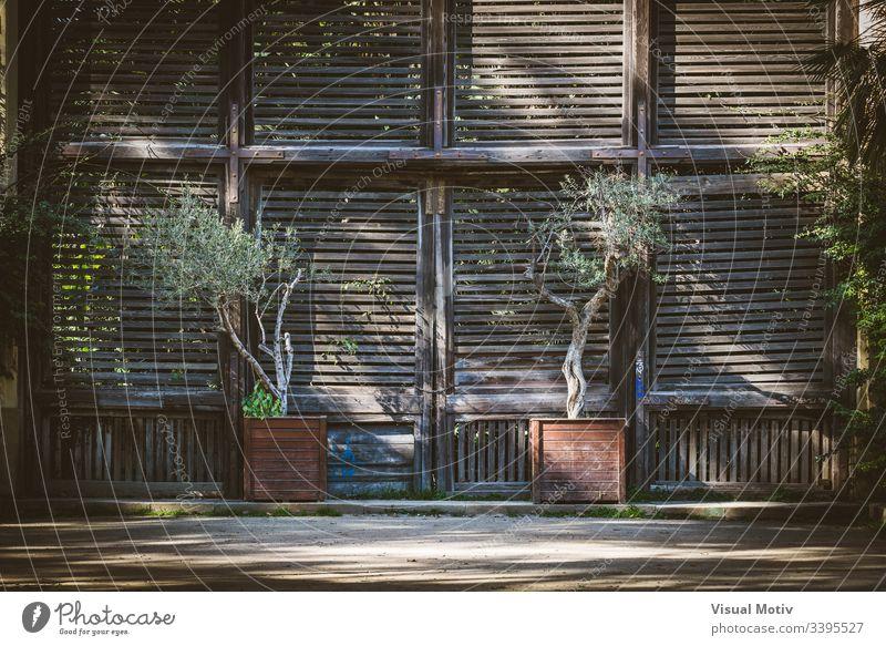 Alte Holzfensterläden eines Lattenhauses Farbe Architektur gebaute Struktur Pflanze keine Menschen niemand Außengebäude Gebäude Tag natürliches Licht Eingang