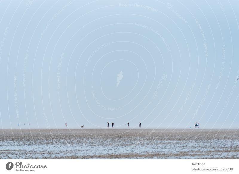 Menschen im Watt - Wattwanderung Wattwandern Wattenmeer Seeufer Nationalpark Wolkenloser Himmel Menschengruppe Morgendämmerung Nordsee Schönes Wetter Sommer