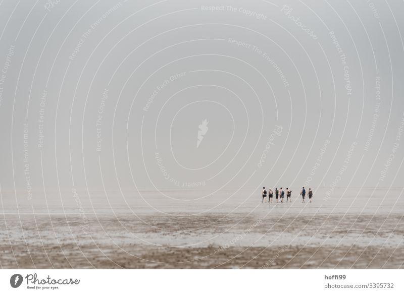 Menschen bei Nebel im Watt - Wattwanderung Wattwandern Wattenmeer Seeufer Nationalpark Wolkenloser Himmel Menschengruppe Morgendämmerung Nordsee Schönes Wetter