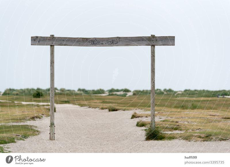 Sandweg durch die Dünen zum Meer Sandstrand Dühne Strandhafer Spuren Fußspuren im Sand Morgendämmerung Insel Sommer Ferien & Urlaub & Reisen Landschaft