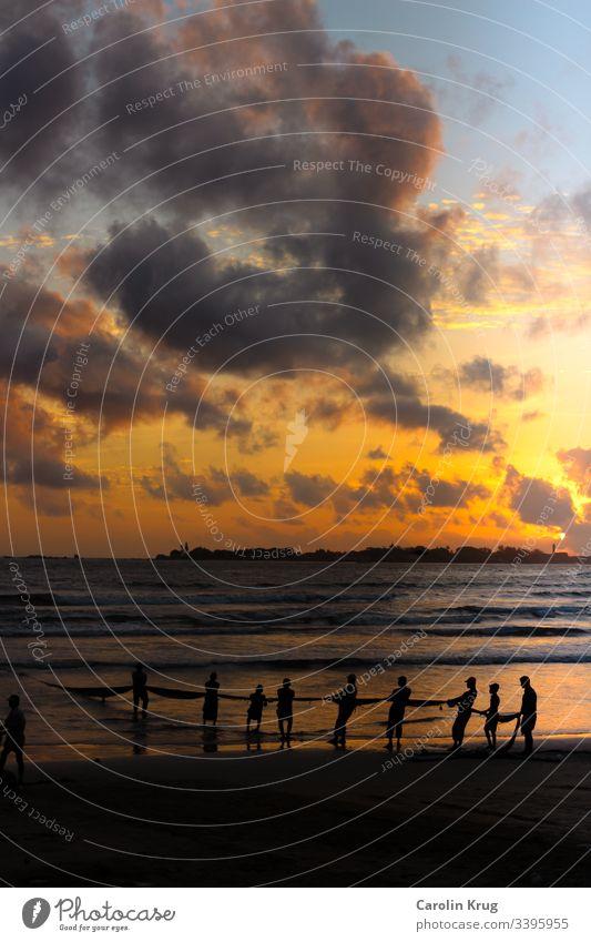 Fischer auf Sri Lanka holen in der Abenddämmerung gemeinsam die Netze ein. Eine Gemeinschaftsarbeit alle ziehen an einem Strang fischen Meer Fischerdorf