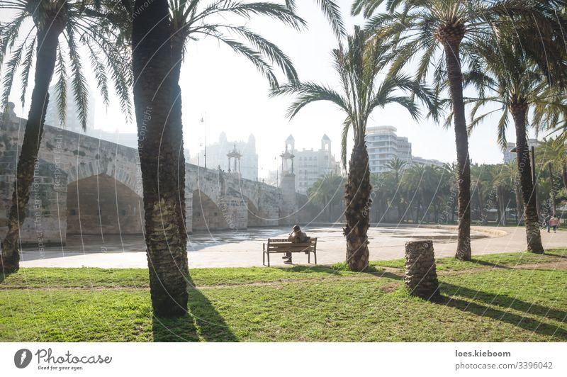 Turia-Flusspark unter der Puente del Mar, Valencia, Spanien Park Brücke puente del mar Architektur Gebäude Großstadt Stadtbild Wahrzeichen Spanisch reisen turia