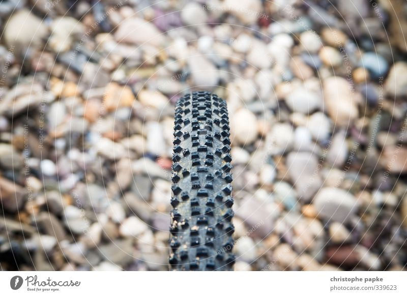 Profil zeigen Freizeit & Hobby Fahrradtour Fahrradfahren Erholung Sport Steinboden Fahrradreifen cross biking Mountainbike Mountainbiking Reifenprofil Gummi