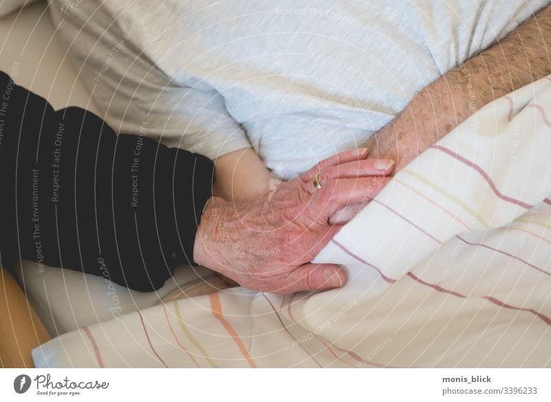 Hand Fürsorge Krankenpflege Angehörige Altenpflege Gesundheitswesen Farbfoto Innenaufnahme Krankheit Mensch Behandlung Krankenhaus Arzt Seniorenpflege
