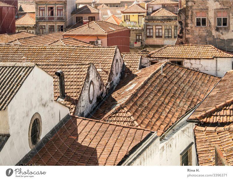 Dächer einer Altstadt Portugal Porto Giebel architektur altstadt Dachziegel historisch