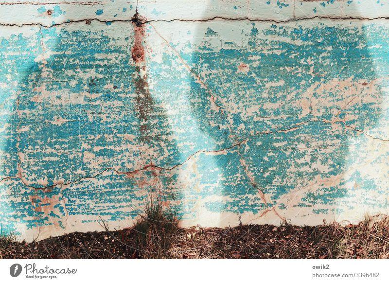 Personae non grata Schatten Wand Farbe alt abblättern türkis marode Zahn der Zeit Personen Detailaufnahme Strukturen & Formen verfallen Verfall Vergänglichkeit