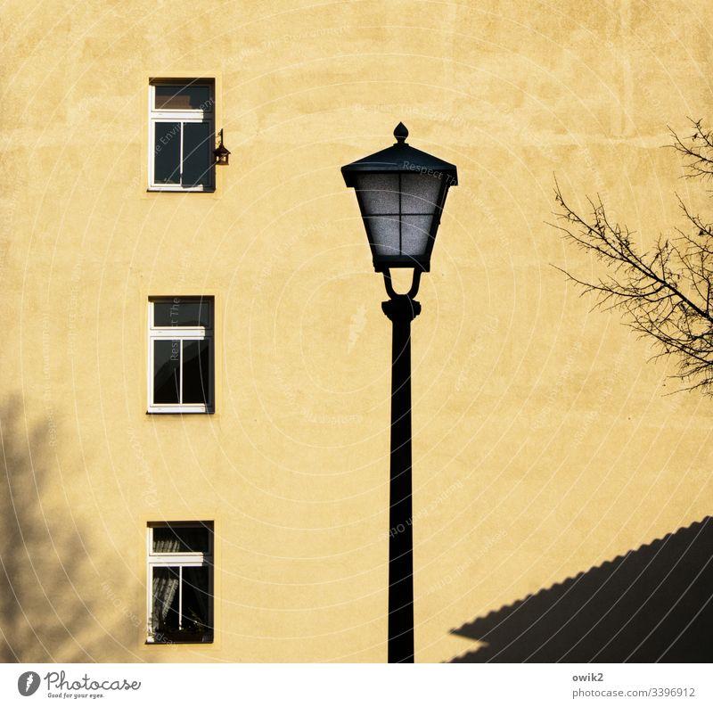 Traum in Senfgelb Wand Fassade Haus Gebäude Fenster Laterne Straßenbeleuchtung Silhouette Baum Zweige trist Ruhe Stille urban Fensterdrei übereinander Etagen