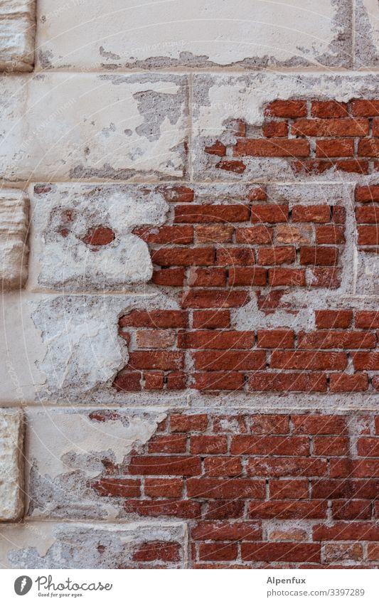 marode Insel Mauer kaputt alt Wand Verfall Vergänglichkeit Detailaufnahme Menschenleer Farbfoto Tag Außenaufnahme Fassade Backstein Backsteinwand verfallen Putz