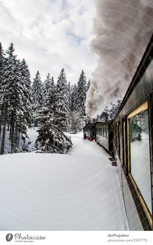 Mit dem Zug durch den winterlichen Harz II Sympathie Textfreiraum unten Außenaufnahme mehrfarbig Sachsen-Anhalt Farbfoto Menschenleer Textfreiraum rechts