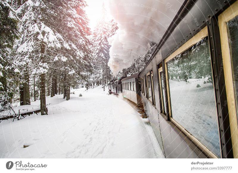 Harzer Schmalspurbahn im Winter Ferien & Urlaub & Reisen Gleise Freiheit Dampfwolke Schienen Schneedecke Natur Schönes Wetter Ausflug Winterurlaub Abenteuer