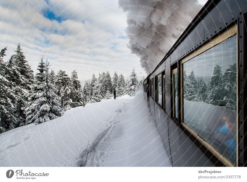 Mit dem Zug durch den winterlichen Harz III Sympathie Textfreiraum unten Außenaufnahme mehrfarbig Sachsen-Anhalt Farbfoto Menschenleer Textfreiraum rechts