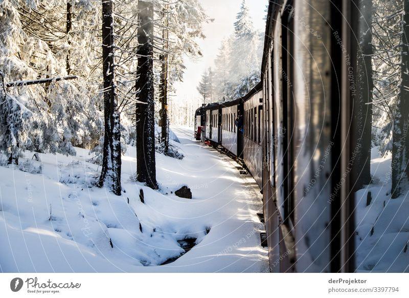 Mit dem Zug durch den winterlichen Harz Sympathie Textfreiraum unten Außenaufnahme mehrfarbig Sachsen-Anhalt Farbfoto Menschenleer Textfreiraum rechts Brocken