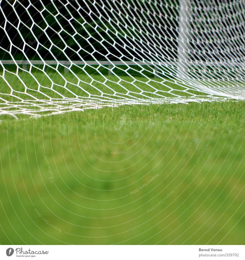 Hexagonalsperre grün weiß Sport Bewegung Spielen Freizeit & Hobby Erfolg stehen frisch Fußball Sauberkeit Fitness Rasen festhalten Netz sportlich