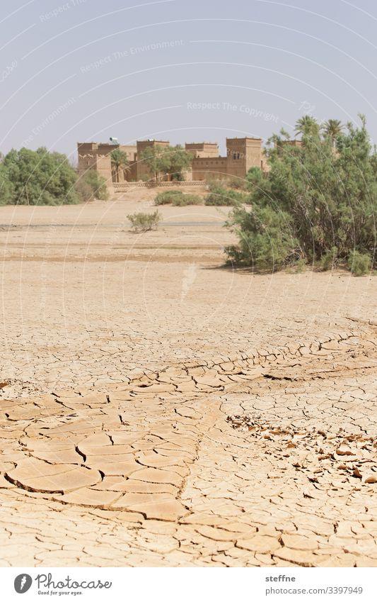 ausgetrockneter Boden mit Oase im Hintergrund Wüste Trockenheit Dürre Klimawandel Marokko wassermangel