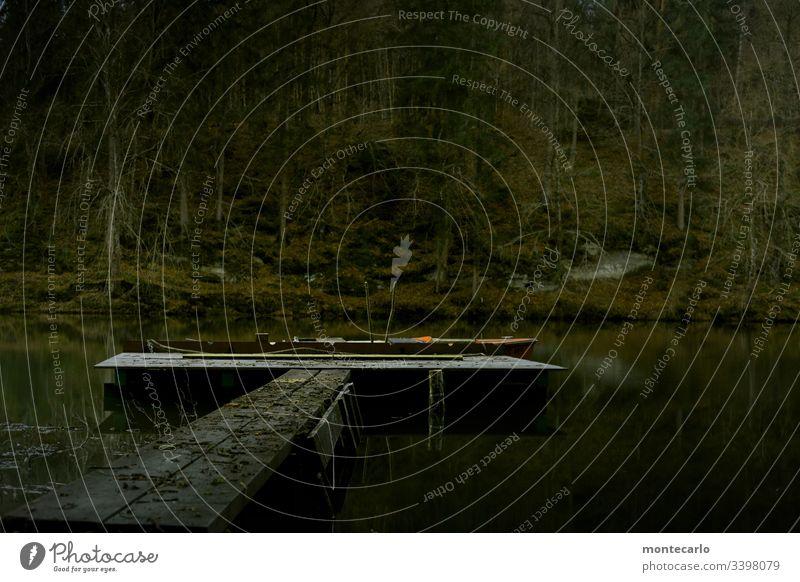 Ruhiger See im Wald mit Bootsanleger für Fischerboot Außenaufnahme Menschenleer Tag Kontrast Gedeckte Farben Farbfoto trist kalt nass dunkel Holz Wasser Luft