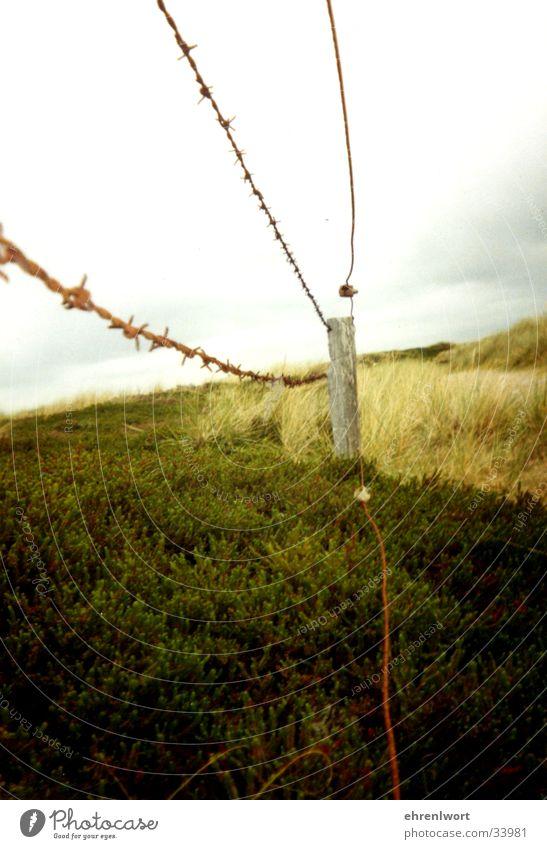 Stacheldrahtzaun Zaun Sylt Ferien & Urlaub & Reisen Umweltschutz Einsamkeit Wolken grau Ferne Stranddüne Rost