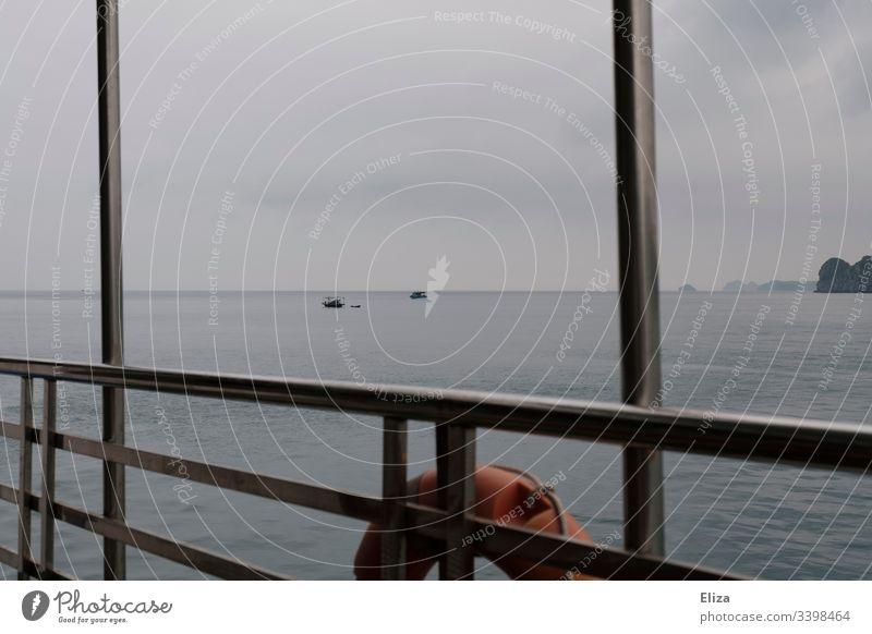 Blick über die Reling eines Schiffes mit Rettungsreifen auf das Wasser Meer blau Holz Seefahrt Ausflug grau neblig Außenaufnahme Schifffahrt Kreuzfahrt