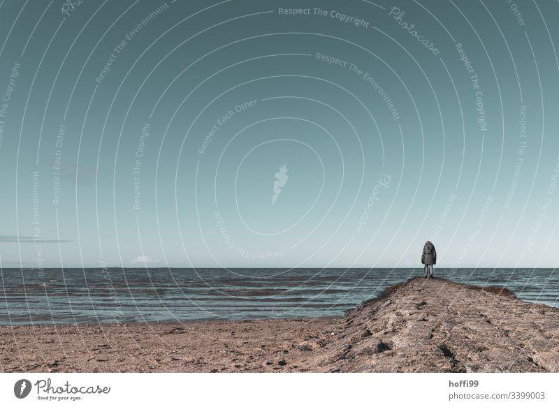 Frau steht im Winter auf einer Landzunge am Meer und blickt in die Fern ausblicken Ausblick Ferne Sehnsucht Nordseeküste Wolkenloser Himmel Umwelt Wattenmeer