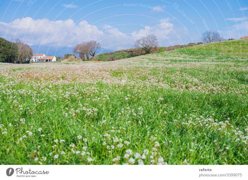 Bäuerliches Haus auf der grünen Wiese an einem bewölkten Tag Baum Landschaft Gras Feld Blume Hügel Anwesen träumen schön im Freien Pflanze Villa Frühling Sonne