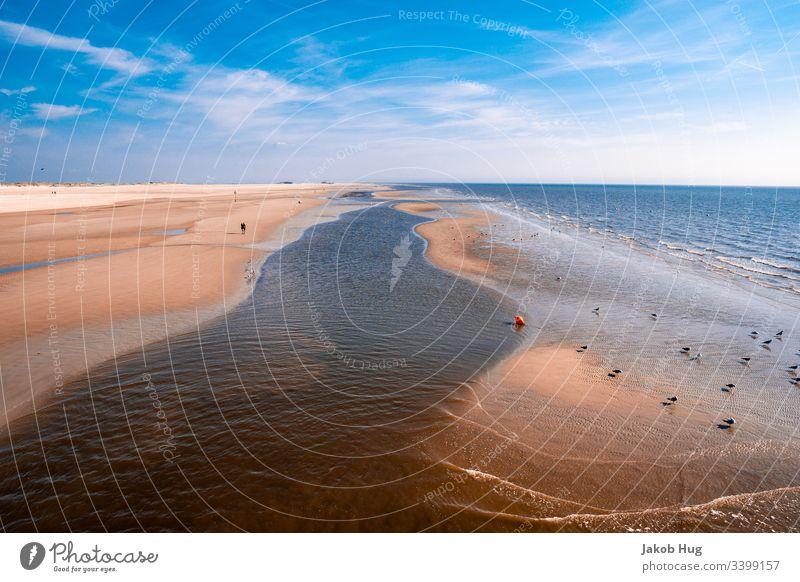 Blick auf den Strand in St. Peter Ording an der Nordseeküste Ozean Atlantik Küste Wattenmeer Boje Bojen tropisch Himmel Landschaft Dühne dühnen Möwe Möwenvögel