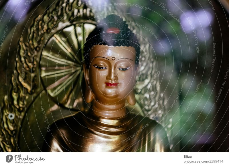 Prunkvolle, schöne, bunte Buddha Figur mit viel Gold buddhismus Religion & Glaube Buddhismus Buddha Statue Meditation Yoga Zen Asien Kultur Farbfoto Kunst