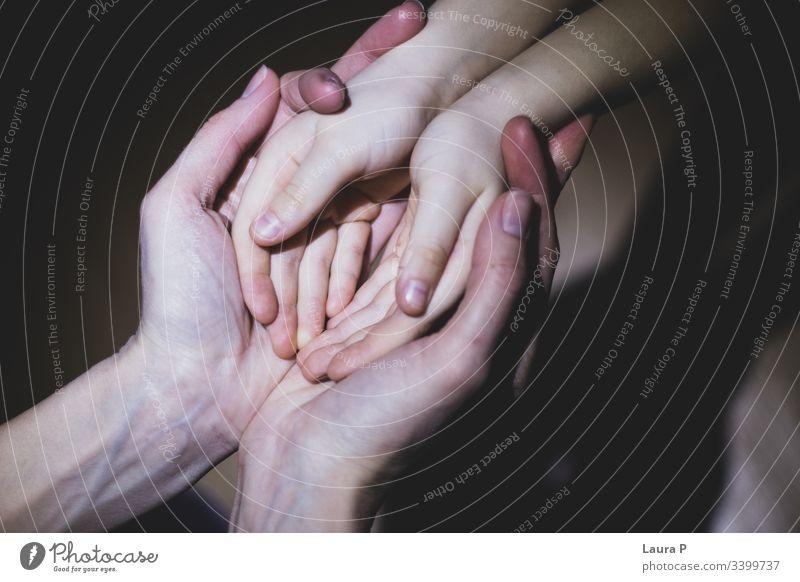 Mutter hält die Hände der Tochter in den Händen Beteiligung Mama Erwachsener Kind Liebe Pflege fürsorglich Familie & Verwandtschaft Frau Eltern schön verbunden