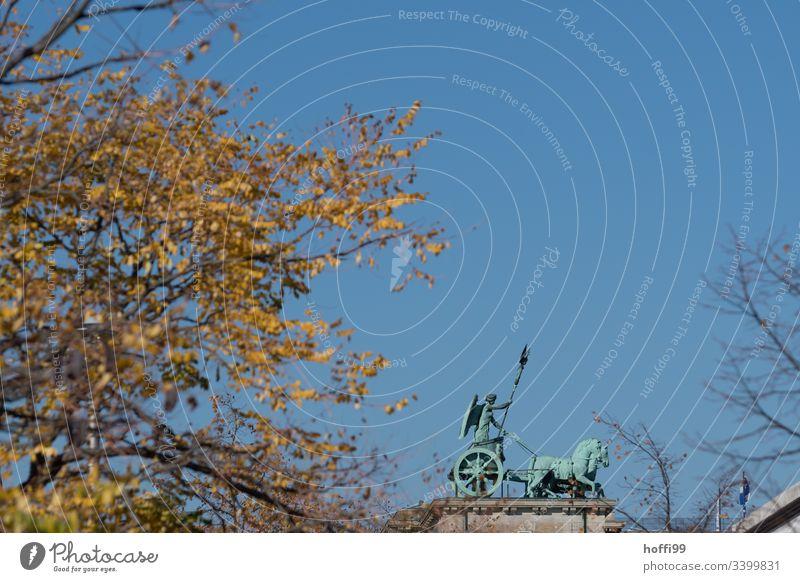 Quadriga Berlin von der Seite in herbstlicher Stimmung Denkmal Brandenburger Tor Wahrzeichen Hauptstadt Sehenswürdigkeit Architektur Außenaufnahme Menschenleer