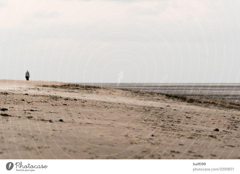surreale Szene mit  Mensch am Strand Wattwandern Wattenmeer Seeufer Nationalpark Wolkenloser Himmel Menschengruppe Morgendämmerung Nordsee Schönes Wetter Küste