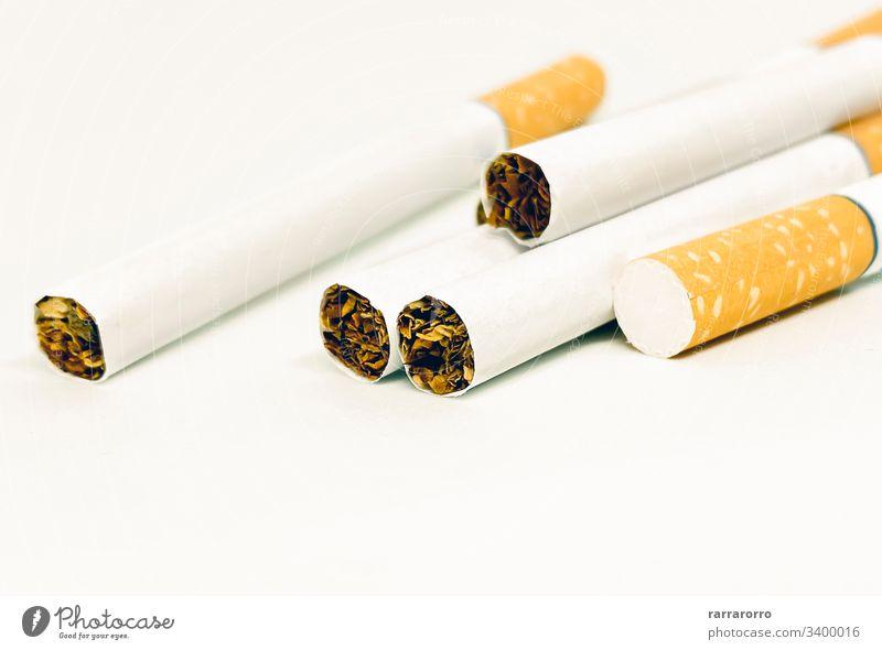 Nahaufnahme einer Zigarettengruppe Menschengruppe Konzept Krebs niemand giftig Hintergrund ungesund Habitus Rauch Tabak Sucht Aschenbecher Hintergründe