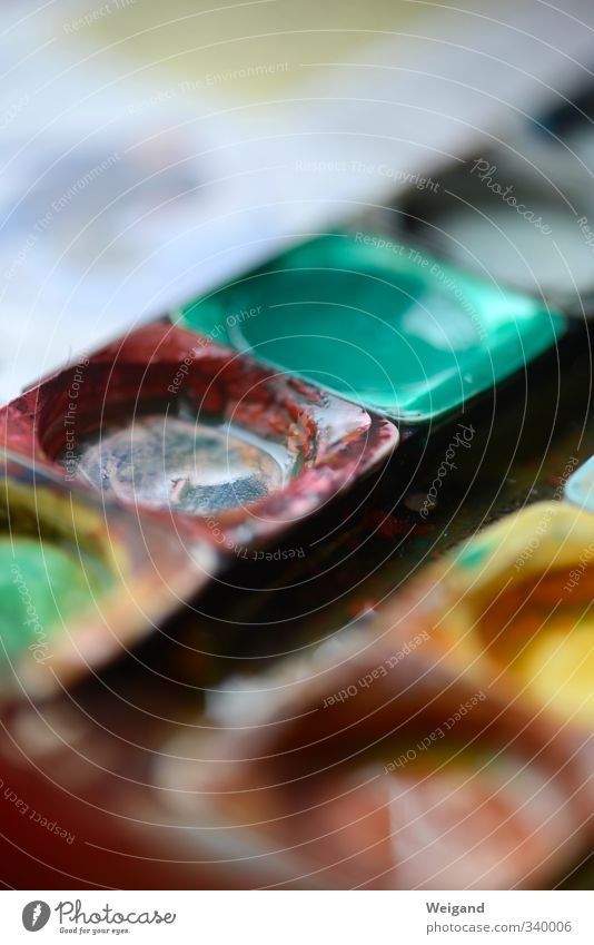 Rot ist aus Kindergarten Schulkind Schüler Flüssigkeit mehrfarbig grün rot Wasser Farbstoff malen Kleinkind Wasserfarbe wasserfarbkasten Farbfoto Innenaufnahme