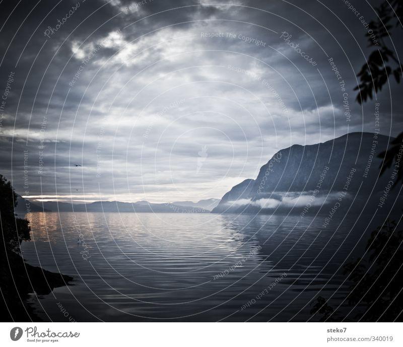 the rain has gone Wasser Wolken Berge u. Gebirge grau Horizont Nebel Hoffnung Norwegen schlechtes Wetter Fjord
