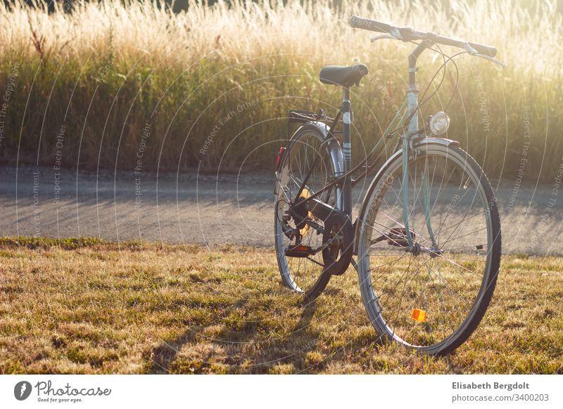 altes Fahrrad fahrrad altes fahrrad sommer ausflug sonnenschein fahrradfahren Sport Fitness Farbfoto Außenaufnahme