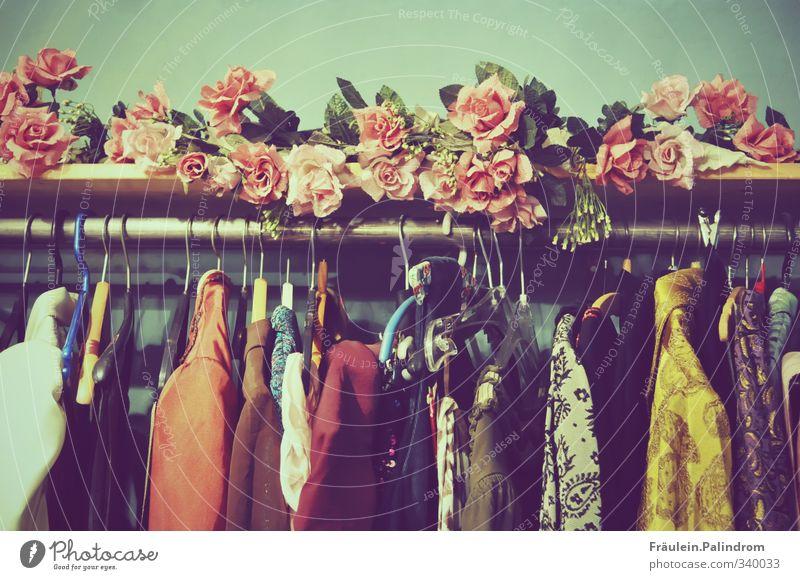 Kleiderbügel mit Kleidung hängen an einer Stange, die mit Rosen dekoriert ist kaufen Dekoration & Verzierung Mode Bekleidung T-Shirt Hemd Anzug Jacke Mantel