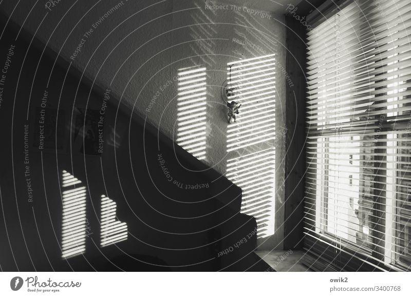 Echo Andante Innenaufnahme drinnen Sonnenlicht Wand Fenster Jalousie Lamellen geheimnisvoll dunkel Kontrast Ecke Büro Dekoration Engel hängend Putte pausbäckig